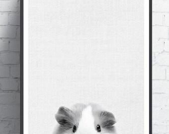 Hamster Print, Hamster Poster, Black & White Hamster, Baby Hamster, Nursery Wall Art, kids poster, Animal Print, Animal Poster