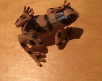 Disguised Frog Geocache