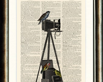 Camera with Birds - vintage image printed on a page from a late 1800s Dictionary Buy 3 get 1 FREE