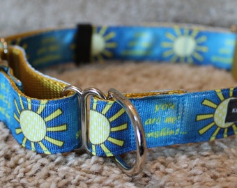 """1"""" You Are My Sunshine Martingale Collar"""