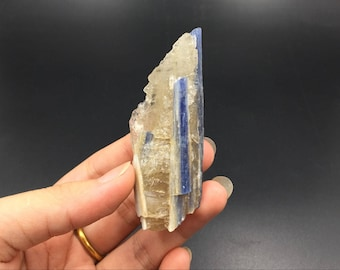 Raw Kyanite Crystal Specimen Blue Kyanite with Rock Quartz Crystal Mineral Specimen Healing Meditation Chakra Kyanite Gemstone CD-K09