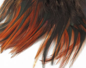 Furnace Feathers Premium strung Saddle   PS-05   Natural 6 inches Natural Feathers