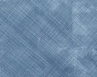 Smarty Cats Scratch Blue Coordinate - 1/2 yd. cuts