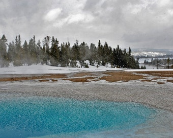 Winter in Yellowstone - landscape photograph - nature art national park wyoming western winter hot springs