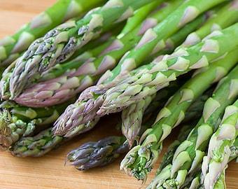 Organic Heirloom RARE 100 Asparagus F1 Mary Washington Green Vegetable Seeds Edible Vegetable F69
