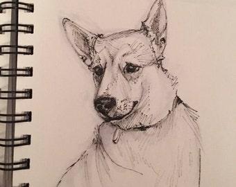 Dog pen/marker sketch
