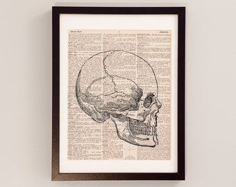 Skull Dictionary Print - Anatomy Art - Print on Vintage Dictionary Paper - Doctor Gift - Medical School - Right Facing Skull