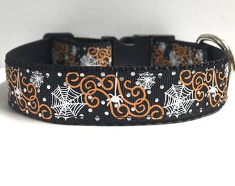 "1"" Spider and web collar"