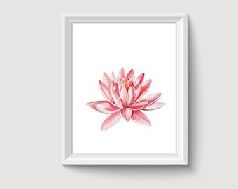 Lotus Flower Watercolor Painting Poster Art Print P317