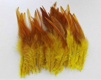 50 with 10-15cm shade yellow Rooster feathers