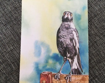 Artcard art birthdaycard party partycard put a message on this Australian Magpie