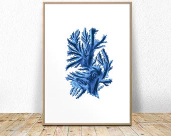 Blue Seaweed Print, Seaweed Printable, Instant seaweed print, seaweed poster, digital download, Algae Printable, Algae Wall Art, wall decor