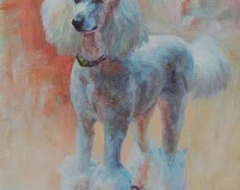 White Standard Poodle Fine Art Print