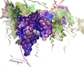 Grapes, Original watercolor painting, 14 x 11 in, fruits, Wine lover, kitchen wall art, pruple vineyard fruits painting