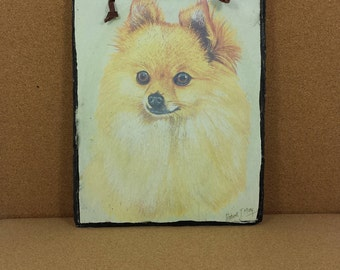 """Collectible Dog Breed Art Print on Slate """"Pomeranian"""" Pom Wall Hanging Signed Robert T May"""