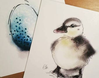 Duckling card // farm animal card // blank greetings card // animal card // duckling art // duckling print // duckling gifts // duck card