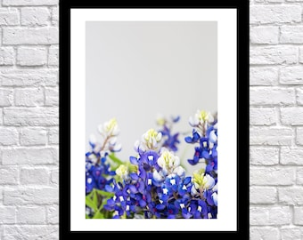 Texas Bluebonnet Flower Art vertical, nature photography, landscape photography, Bluebonnet Art, flower print, texas blue bonnet wall art