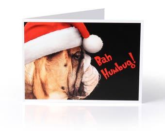 "Limited Edition Bulldog Christmas Card: ""Bah Humbug!"""