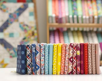 Ludlow - Fat Quarter Bundle by Denyse Schmidt - 19 prints