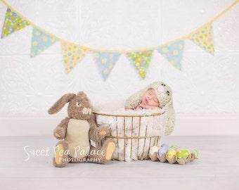 Instant Download DIGITAL BACKDROP For Photographers Easter Egg Basket