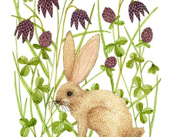 LARGE Cottontail Print,  bunny rabbit art, hare illustration, giclee, watercolor print, spring flowers