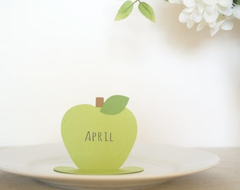 Simple Elegant Apple place cards Set of 24