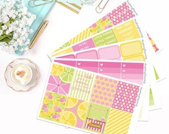 Pink Lemonade - Weekly Kit | Erin Condren Vertical Life Planner Stickers