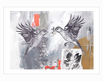 Chaffinch Pair - Limited Edition - A4 Giclée Print