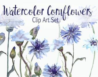 Watercolor Cornflower Clip Art Set
