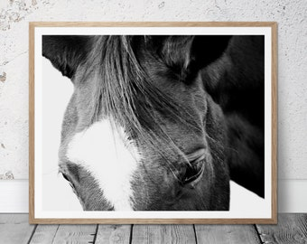 Horse Photograph, Digital Download, Black&White, Western Art, Printable, Equestrian