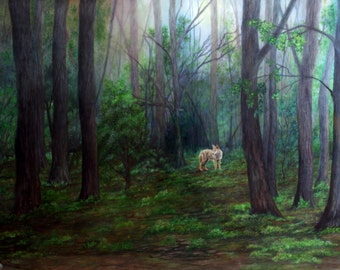 Prismacolor art print of a coyote in the woods 13x9