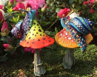 Fantasy Snail Mushroom