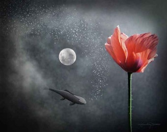 Numinous Reflection - Red Poppy, Full Moon, Koi Fish, Clouds
