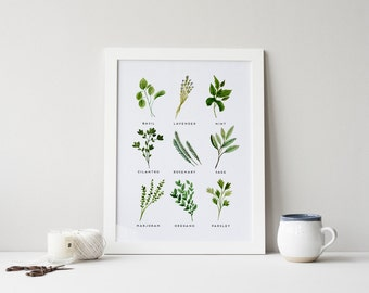 Herbs Print · 4x6 5x7 8x10 11x14 · Kitchen Art Print · Watercolor Herbs · Basil, Oregano, Sage, Cilantro Art · Botanical Art · Kitchen Decor