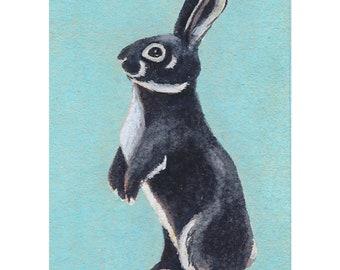 Black Rabbit, original ACEO