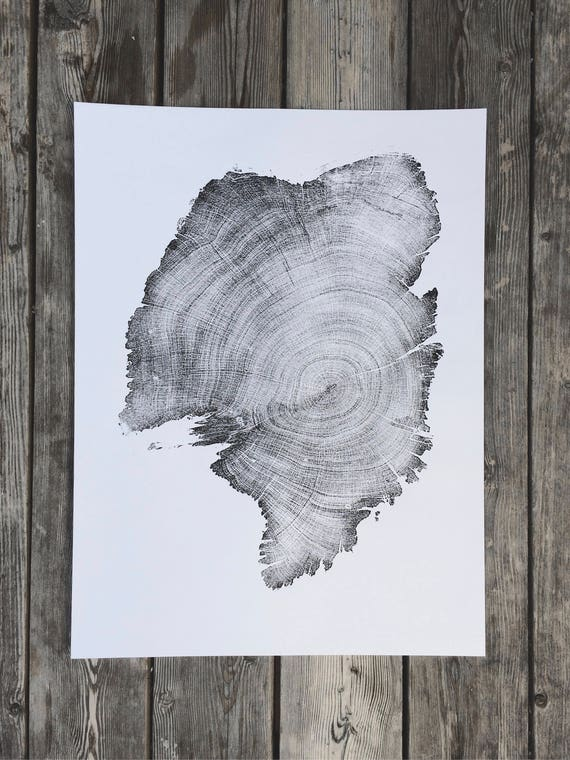 900 Year Old Juniper Tree, Father's Day Gifts, Dad Gift Ideas, Tree Ring Art Print, Woodcut, Limited Edition print, 1st anniversary