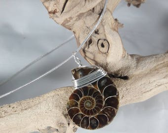 Ammonite Wire-Wrapped Necklace / Authentic Fossil Jewelry