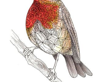 Nature inspired bird art print, Bird lovers gift, Bird gifts for women, Bird lover gift men, Robin xmas gifts 2017