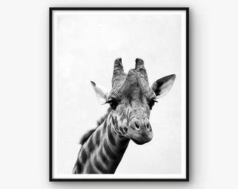 Nursery Print, Giraffe Print, Animal Poster, Nursery Poster, Giraffe Wall Art, Nursery Decor, Giraffe Poster, Animal Print, Nursery Art
