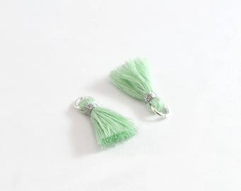 Small PomPoms 2 cm set of 2 Mint P134-FM
