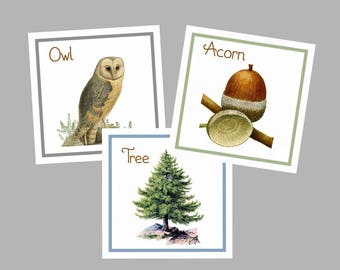 Nature Table Cards, Woodland Table Cards, Woodland Table Numbers, Table Tents, Nature Table Cards, Nature  Animals ,  Woodland Wedding,