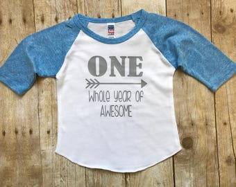 One Whole Year of Awesome custom birthday shirt, First Birthday boy Outfit,  Personalized Birthday Shirt, First Birthday Shirt, Cake Smash,