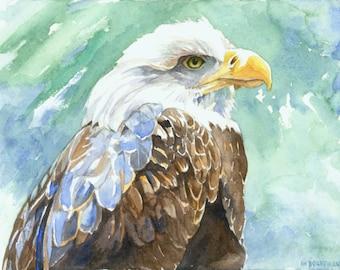 Bald Eagle watercolor print By Michael Boardman