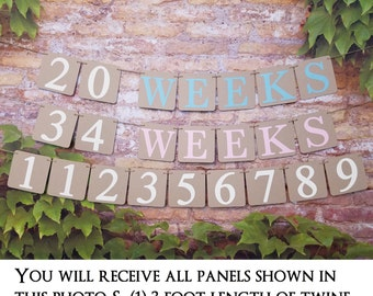 Pregnancy Weeks Photo Prop, Weeks Banner, Pregnancy Photo Prop, Weeks Photo Prop, Weeks of Pregnancy Photo Banner, Week by Week Pregnancy