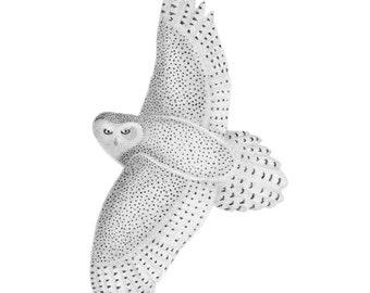 Snowy Owl - 4x6 print