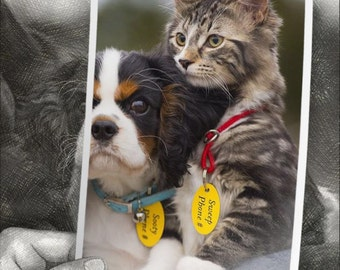 Pet Collar Tag, Dog Tag, Cat Tag, Don't Lose Your Pet, Help Your Pet Find Their Way Home, Key Tag, Key Ring