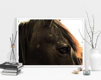 Horse Photography Print, Wall Art, Printable Art, Rustic Print, Instant Digital Download Print