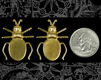 Raw Brass Beetle Flat Setting on Back Set of Two * B-P71