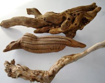 Driftwood Sculptures, 3 Piece Set, Driftwood Ornament, Driftwood Art, Driftwood Crafts, Beach Decor, Driftwood Piece, Great Gift