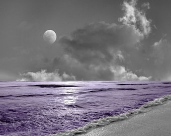 Black White Purple Home Decor, Coastal Ocean Moon. Purple Bathroom Bedroom Wall Art Matted Picture